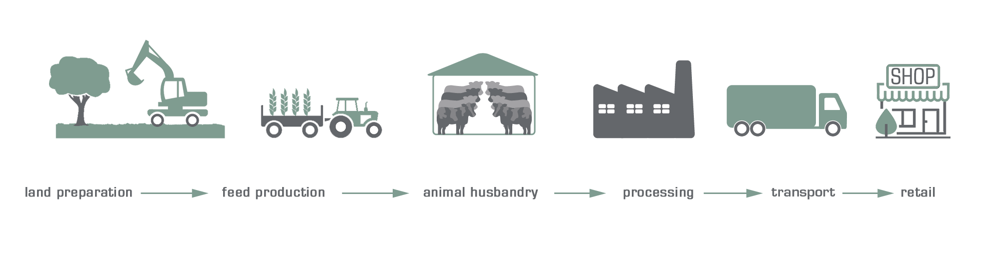 infographic Life Cycle Assessment animal products